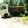 Holztransportorganisation_004