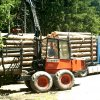 Holztransportorganisation_005